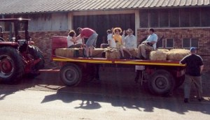 Transport, country-style!